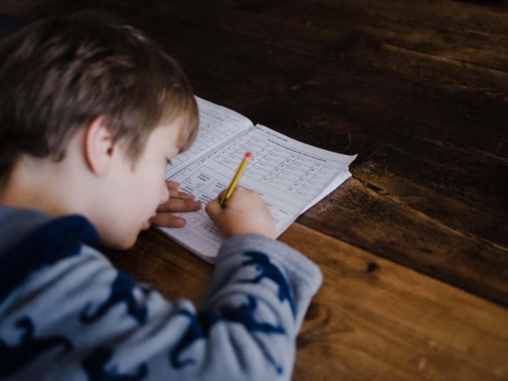 refuerzo escolar y academia de aprendizaje en mallorca